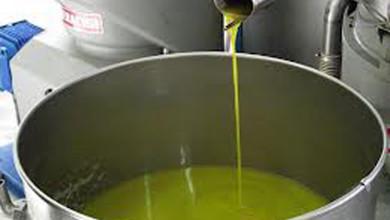 L'olio prodotto dai frantoi arriva finalmente nei supermercati. Questo il vero made in Italy