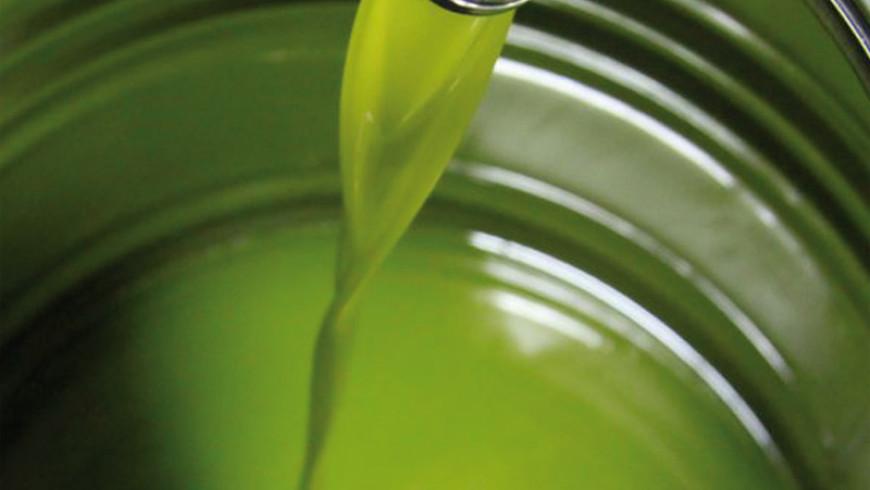 Un algoritmo per delineare l'origine dell'olio extravergine di oliva